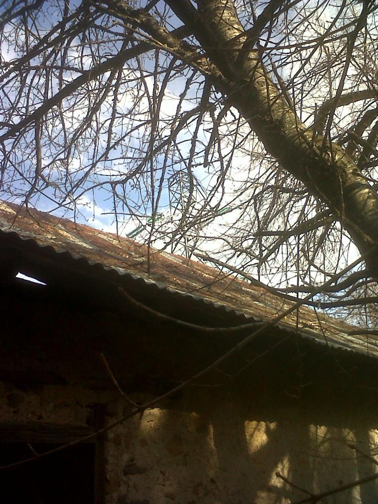 puy-sanieres-20120322-00748.jpg